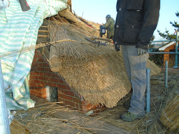 Thatched Roof Survey